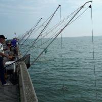 Pesca en el Lido di Volano (Ferrara, Italia).